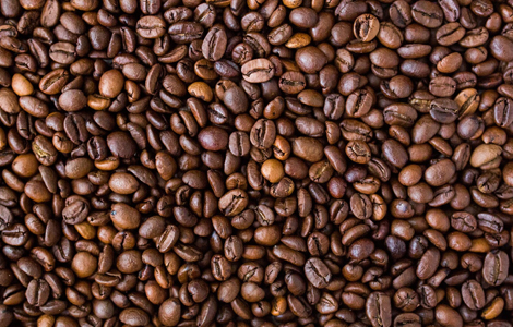 Horpestad Plantesalg * Kaffi & Snob