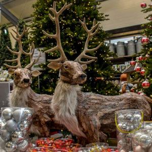 Horpestad Plantesalg * Julepynt > Utstilling