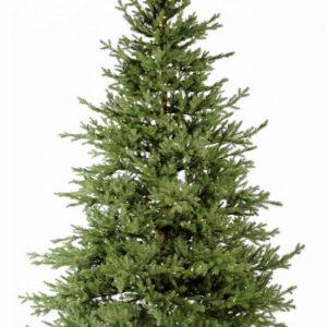 Horpestad Plantesalg * Jul - Kunstige juletrær > Gran Verbier 180cm