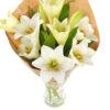 Snittblomster * Begravelse - Kondolansebukett : Gavepakkede hvite liljer