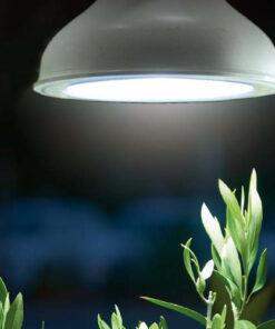 Horpestad Plantesalg * Plantelys fra Nelson Garden - LED-pære 18W E27-sokkel